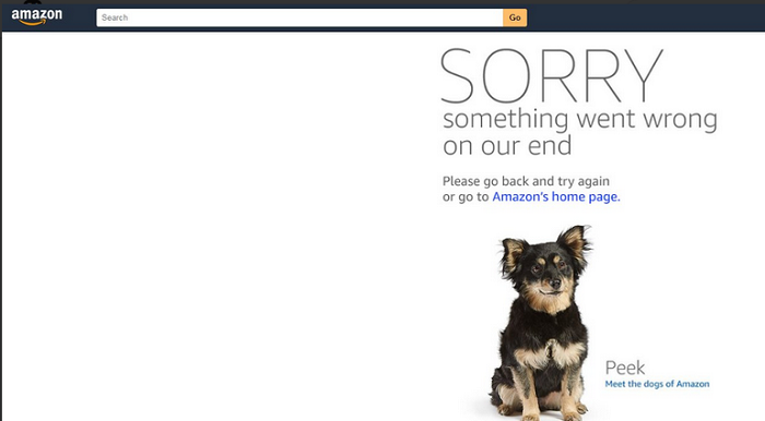 Prime Day shoppers encountered this disappointing message when they tried to shop