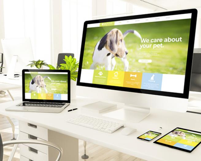 graphical user interface, website
